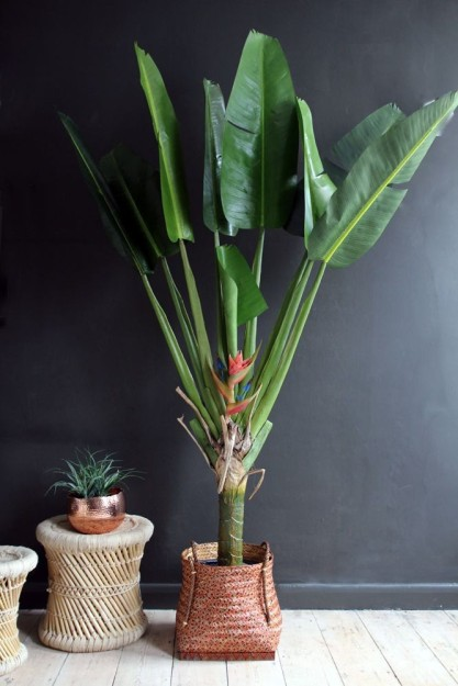 faux-potted-bird-of-paradise