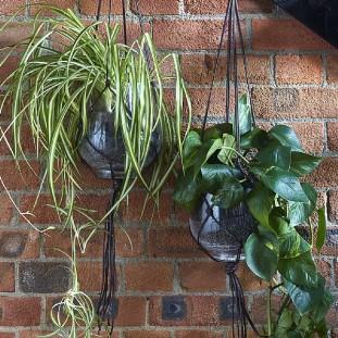 tali-hanging-flower-pot
