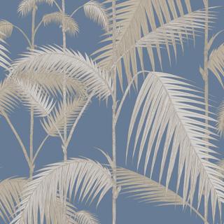 cole-son-palm-jungle