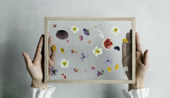 pressed-flower-frame-moebe-gardenista